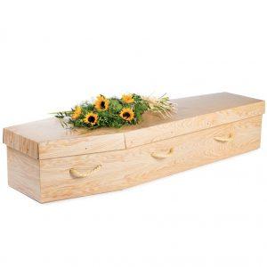 cardboard-coffins